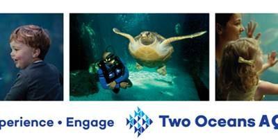 Two Oceans Aquarium Talk | Testimonial