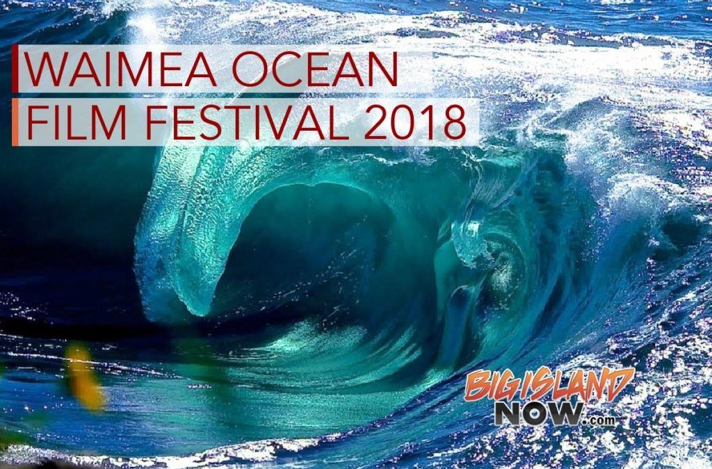 Feedback From Hawaii! @ the Waimea Ocean Festival 3/01/18